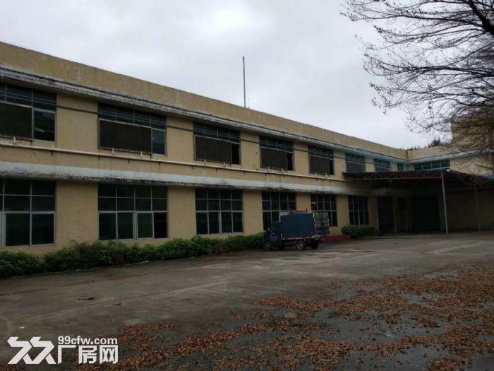 花山三东大道独院6260平米厂房出租-图(3)