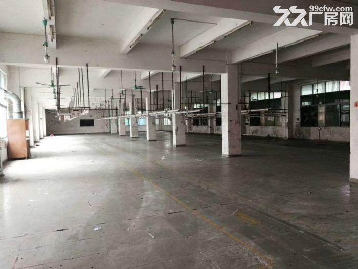 花山三东大道独院6260平米厂房出租-图(7)