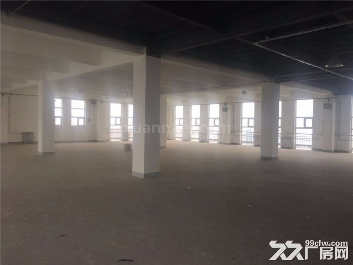 津南工业园4000平米厂房出租-图(3)