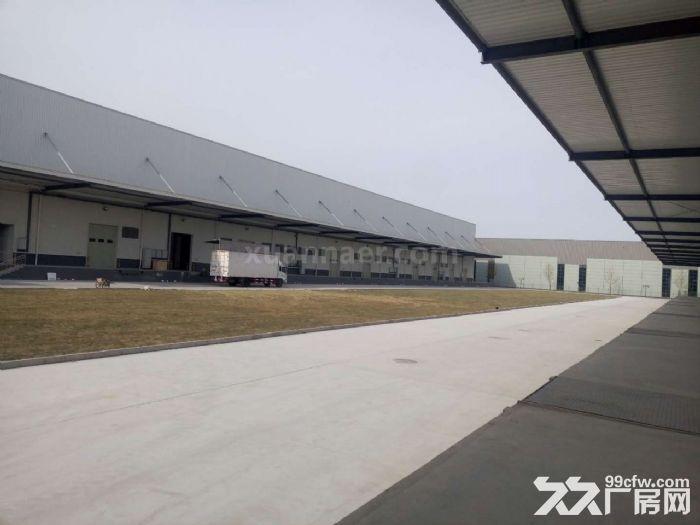 空港经济区3000平米丙二类高台高标库出租-图(5)