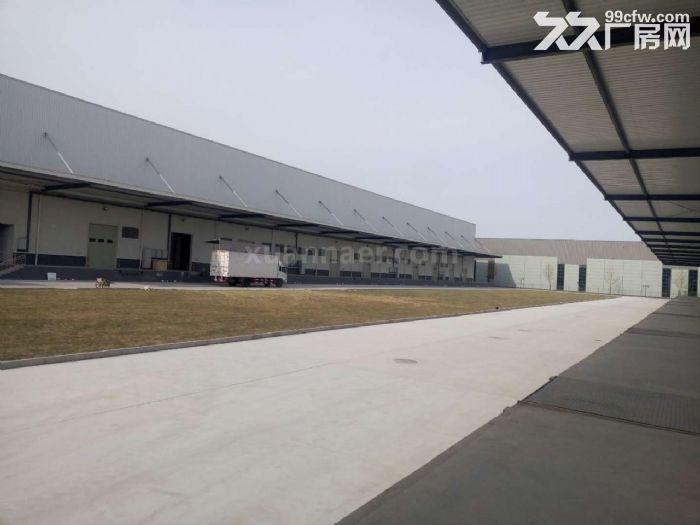 空港经济区6000平米丙二类高台高标库出租-图(4)