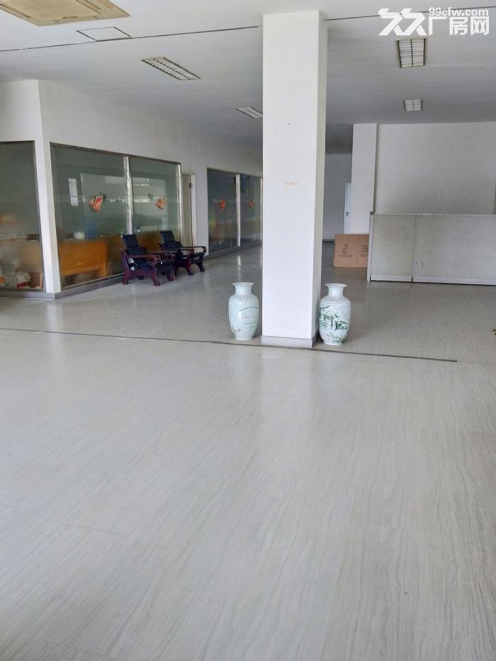 滨湖华庄10000平独门独院双层厂房可分租,很漂亮-图(4)