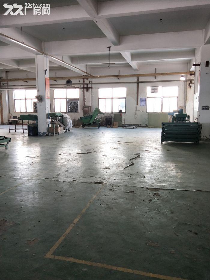 滨湖华庄5000平独门独院双层厂房,形象特别上档次-图(3)