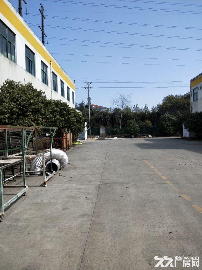 滨湖华庄5000平独门独院双层厂房,形象特别上档次-图(6)