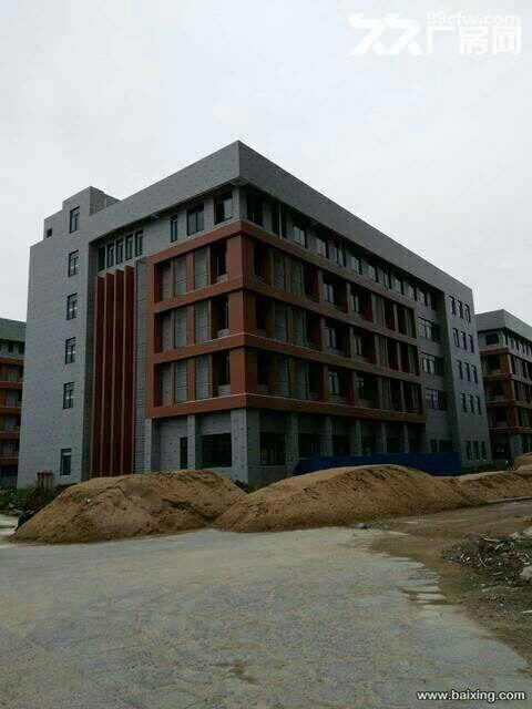 武汉市东西湖区方圆国际全新独栋700−4200㎡工业厂房可分割租/售-图(2)