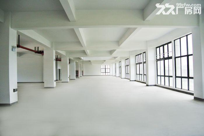 松江科技园全新厂房800平形象好配2吨货梯可环评开票-图(3)
