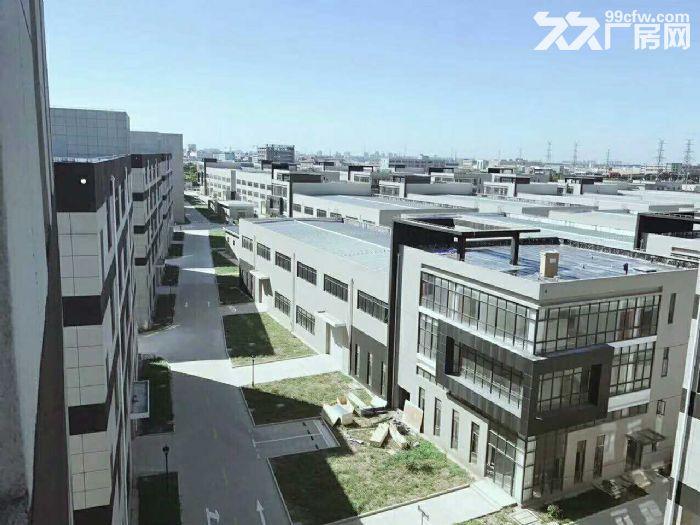 松江科技园全新厂房800平形象好配2吨货梯可环评开票-图(4)