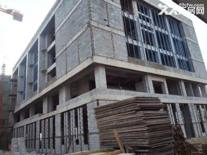 背靠陕汽法士特工业重镇蔡家坡百万米标准化厂房可租可售1000平米起-图(3)