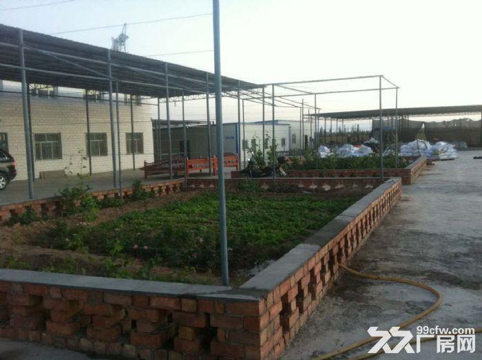 出租吐鲁番312国道收费站旁12亩厂房-图(2)