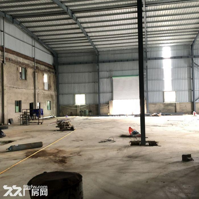 翔安马巷近巷北工业区800平钢构单层厂房/仓库/土地/基地-图(4)