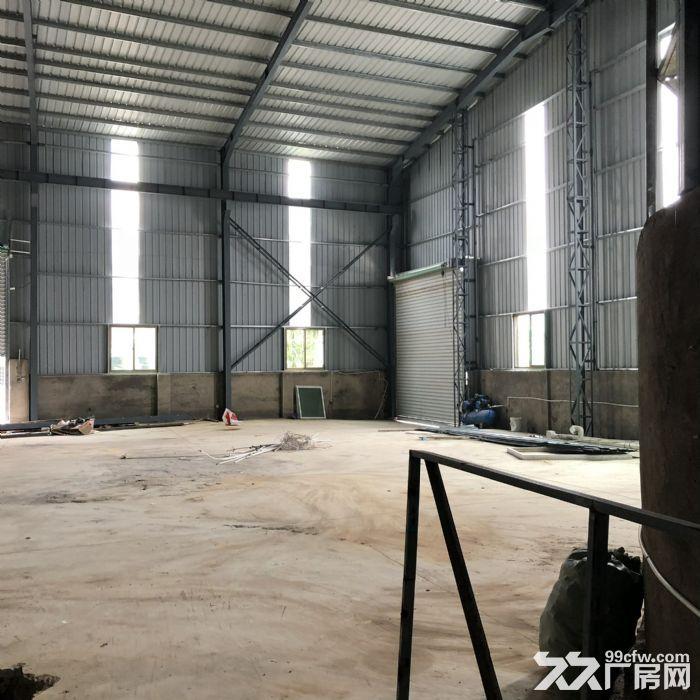 翔安马巷近巷北工业区800平钢构单层厂房/仓库/土地/基地-图(5)