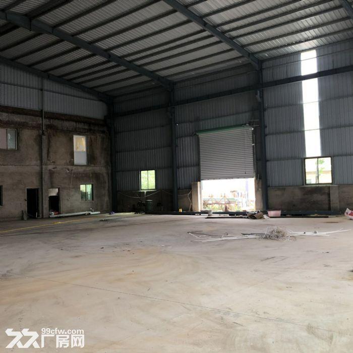 翔安马巷近巷北工业区800平钢构单层厂房/仓库/土地/基地-图(6)