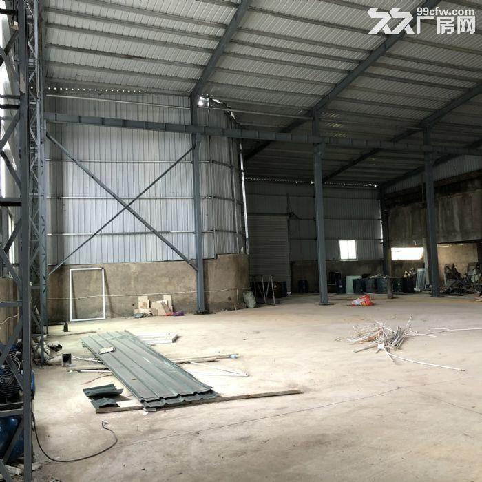 翔安马巷近巷北工业区800平钢构单层厂房/仓库/土地/基地-图(7)