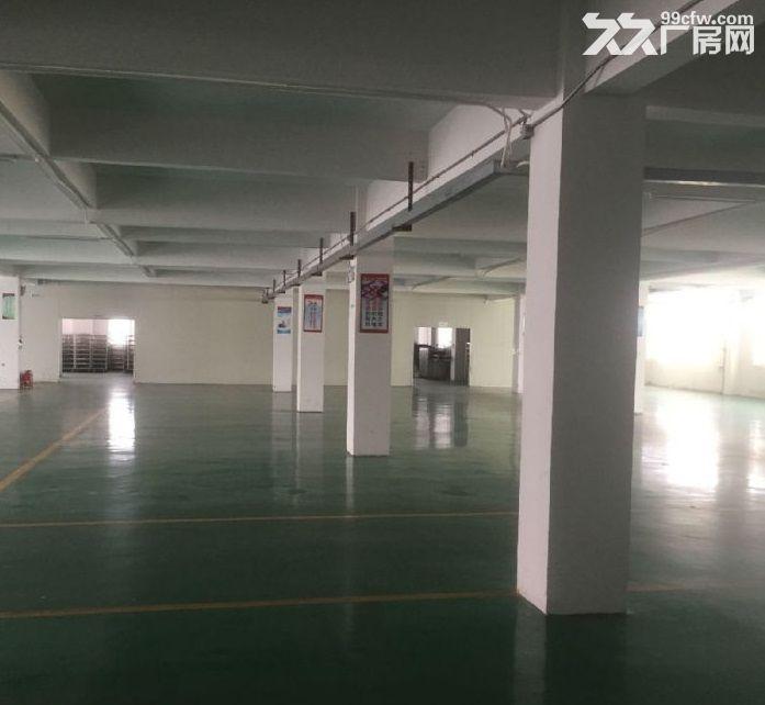 花东空港经济区15000平米标准厂房出租,证件齐全,可办环评-图(3)