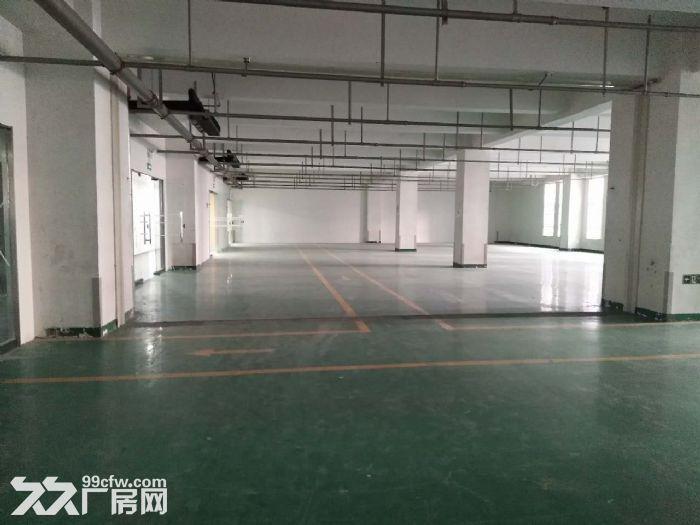 研发楼一层800平米无地下医药,研发,仓储-图(2)