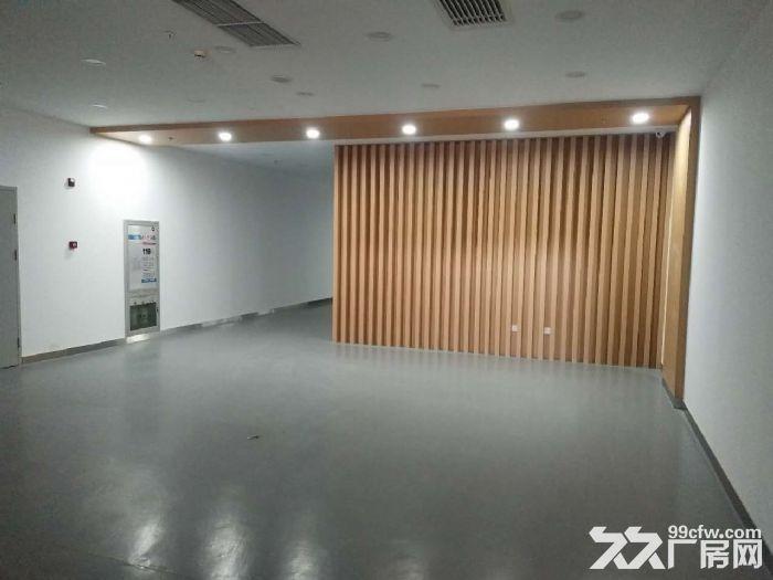 研发楼一层800平米无地下医药,研发,仓储-图(3)