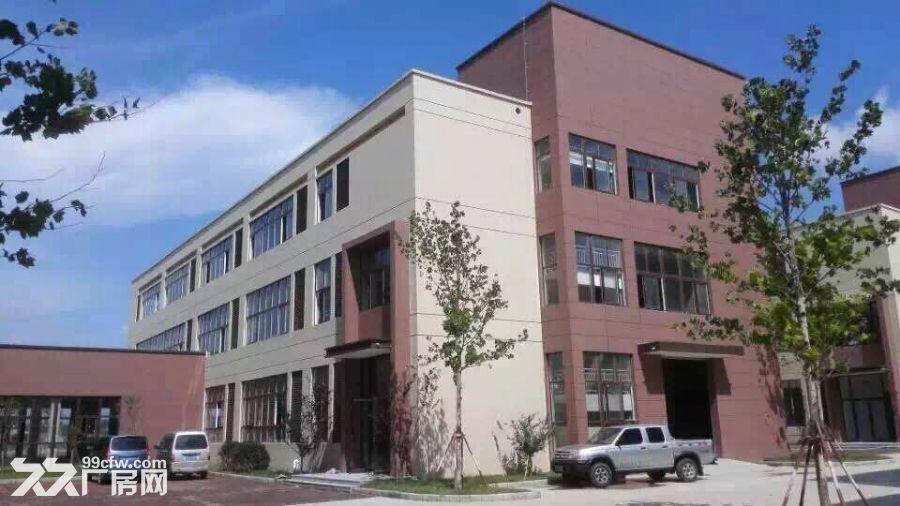 大开间标准厂房办公楼出售出租-图(1)