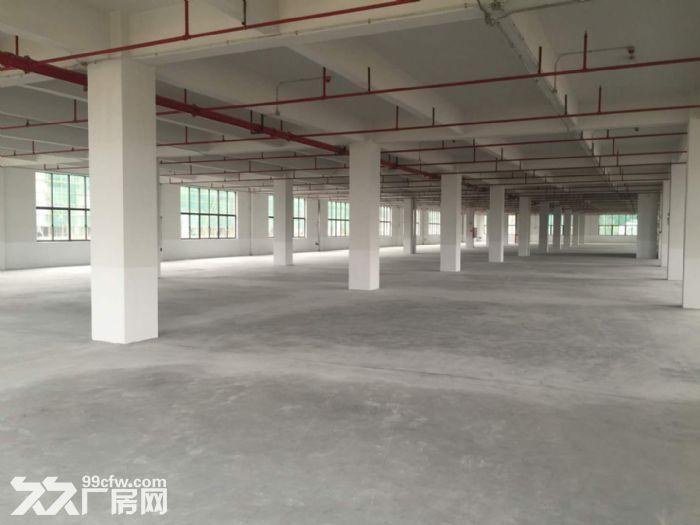 空港经济区标准厂房一楼3000平米出租-图(2)