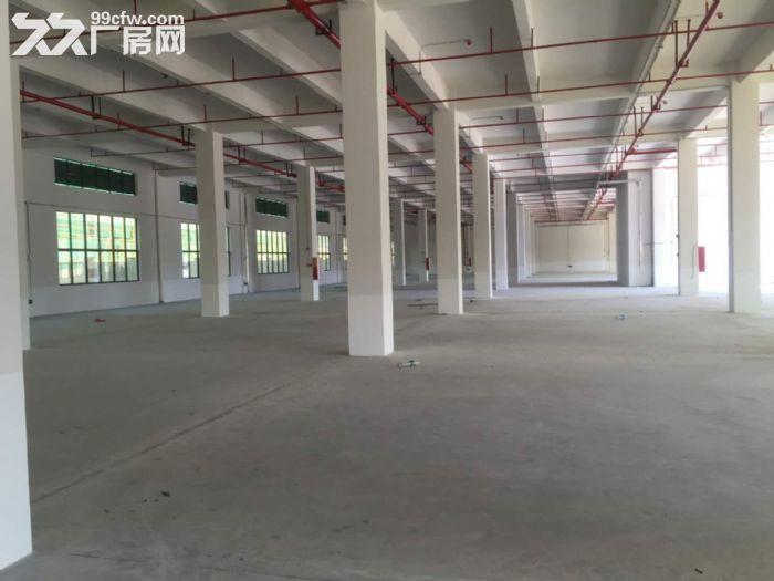 空港经济区标准厂房一楼3000平米出租-图(1)