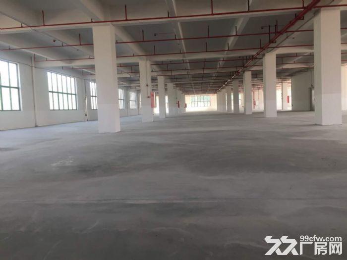 花东金谷南路喷淋消防厂房14260平米出租-图(2)