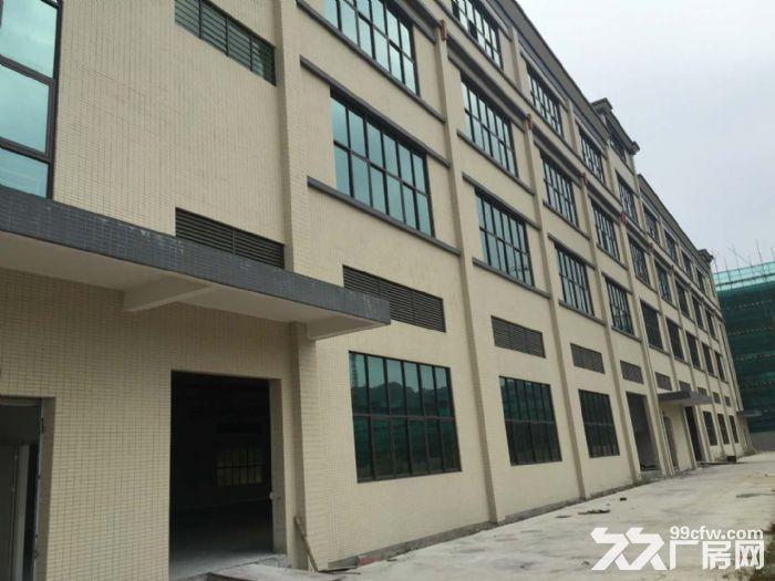 花东金谷南路喷淋消防厂房14260平米出租-图(3)