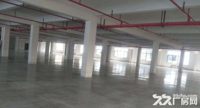 花都新华街道7500平米标准厂房出租-图(2)