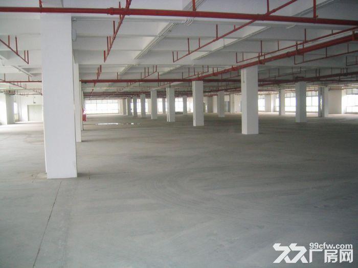 花都新华街道7500平米标准厂房出租-图(1)