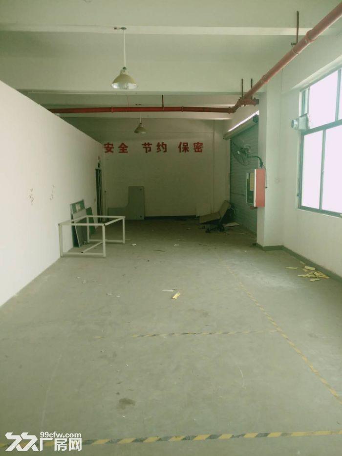 深圳写字楼(出租)厂房出租,厂房招租,厂房租赁,办公室招出租(中介勿扰)-图(7)
