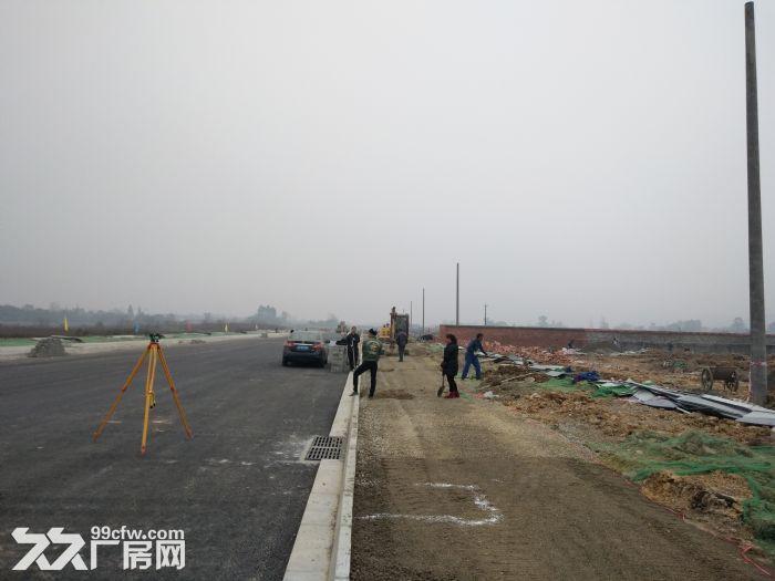 (土地出售)蒲江寿安新城产业园800亩土地出售享受政府补贴-图(3)