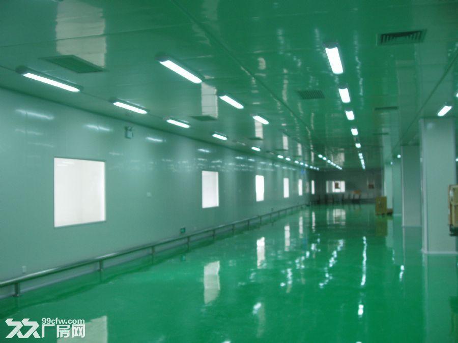 寮步石龙坑有独院一楼1200平方招租水电线路齐全-图(2)