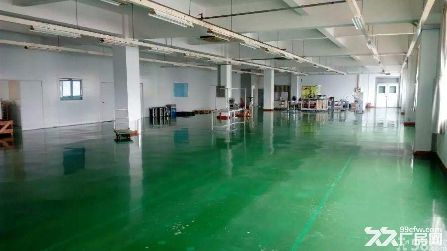 寮步标准厂房二或三楼500平方出租,带办公装修-图(2)