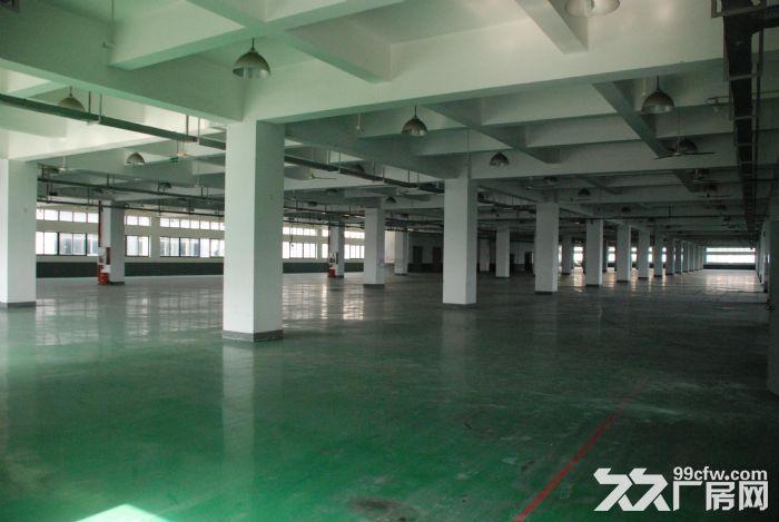 寮步华南城标准独院厂房12000平方出租-图(2)