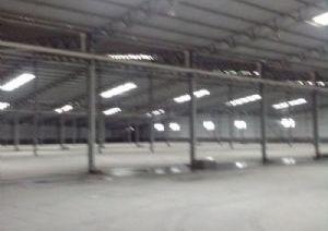 独门独院3万平米仓库出售