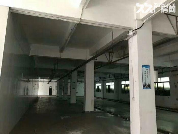 公明田寮3900平米独院厂房出租-图(2)