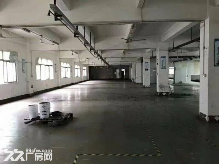 公明田寮3900平米独院厂房出租-图(3)