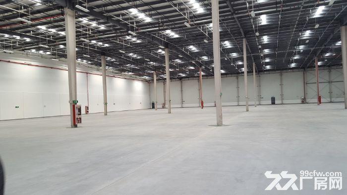 苏州园区靠近市区5000平、7500平仓库出租-图(4)