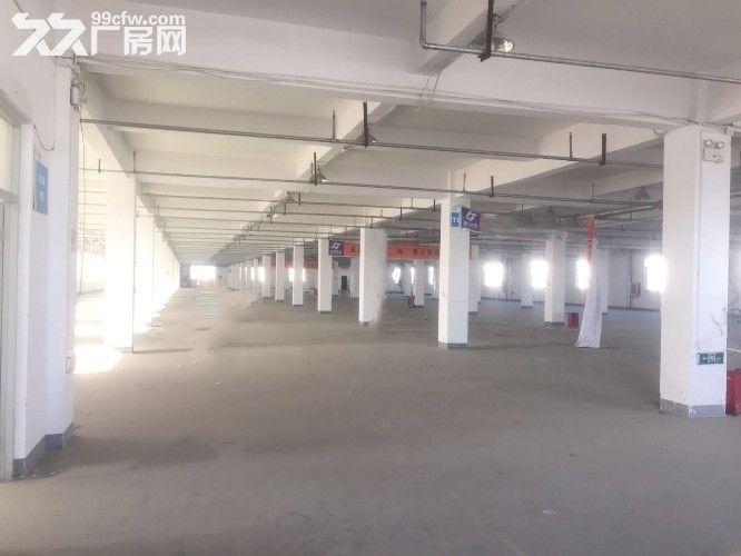 天津市武清区南蔡11000平厂库房-图(2)