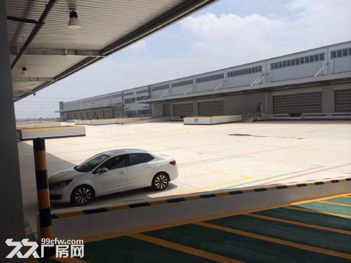 【6图】浦东南汇双层坡道月台库50000平米-浦东仓库图片