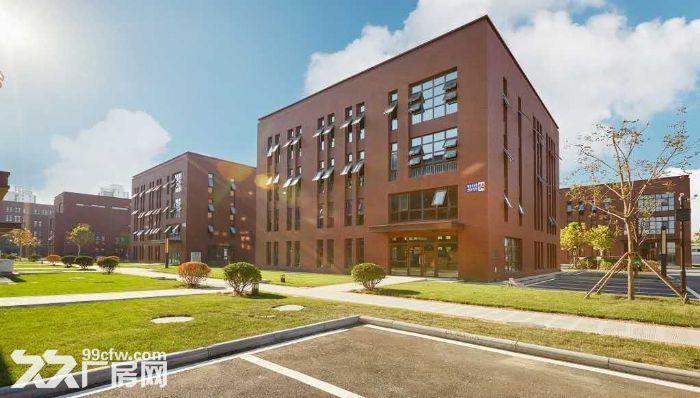 外环旁三层到顶办公别墅出租,一楼可轻加工楼上可办公-图(3)