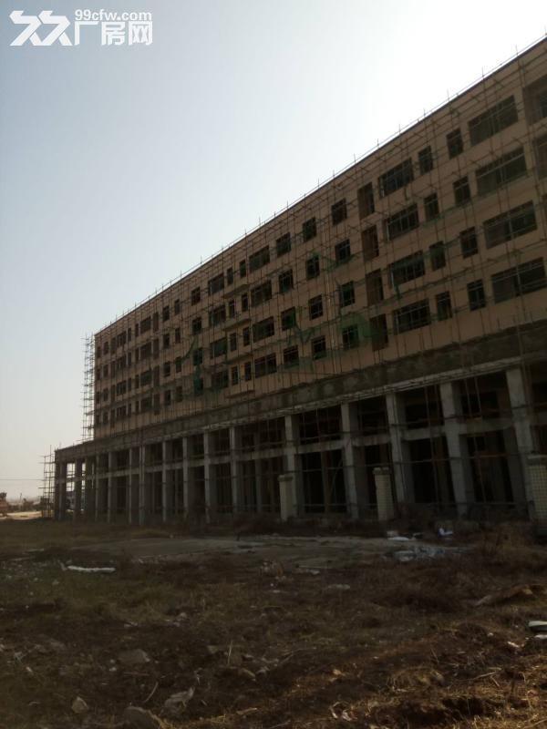 出售湖北汉川城北产业园标准厂房仓库40000方-图(8)