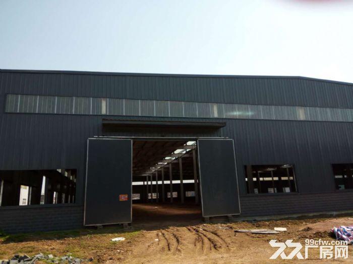 出租湖北省汉川市城北产业园钢构厂房15000平方-图(4)