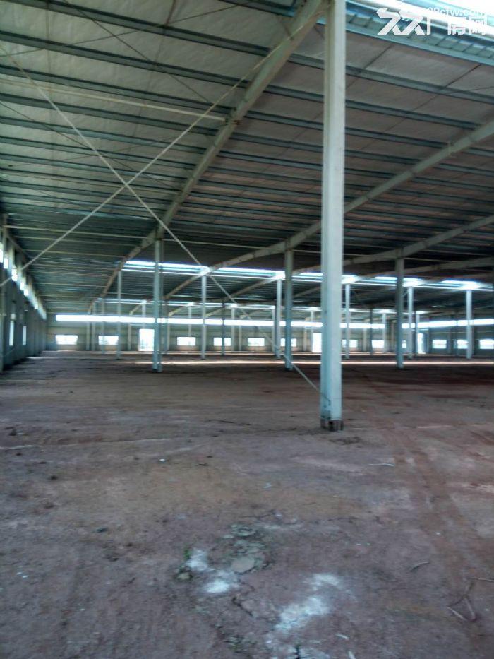 出租湖北省汉川市城北产业园钢构厂房15000平方-图(6)