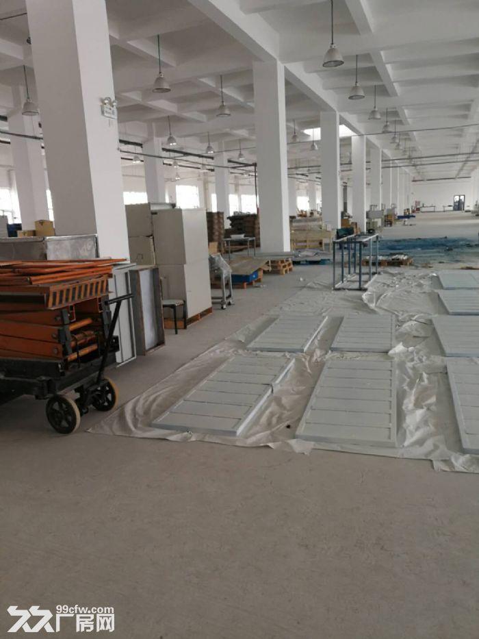 津南双港7000平米优质厂房出租-图(3)