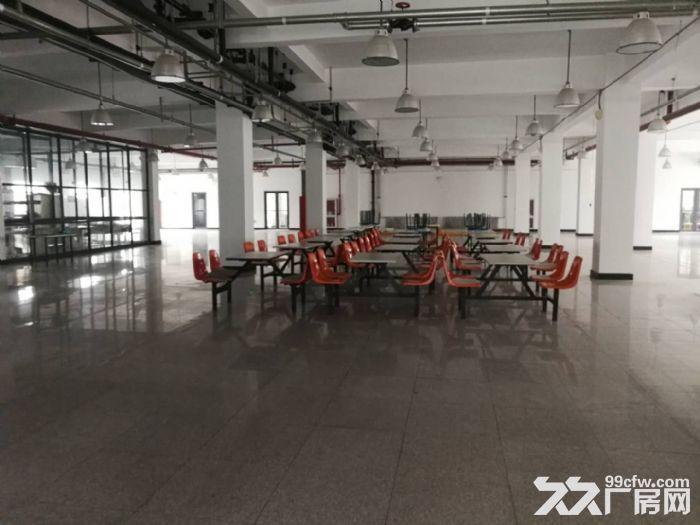 津南双港7000平米优质厂房出租-图(6)