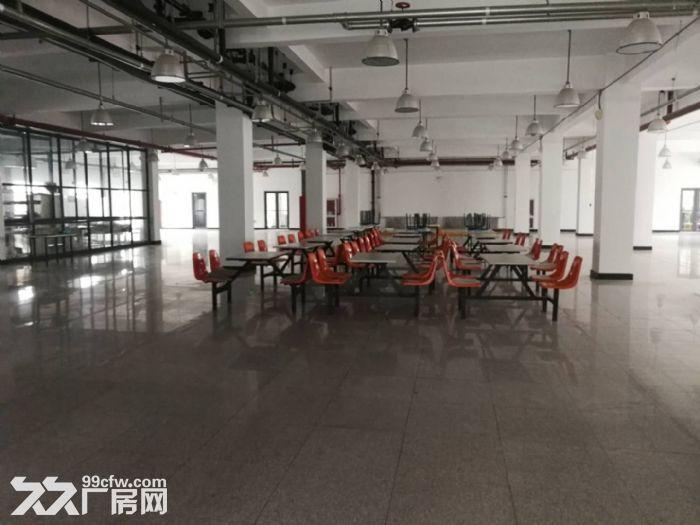 津南双港9000平米优质厂房出租-图(6)