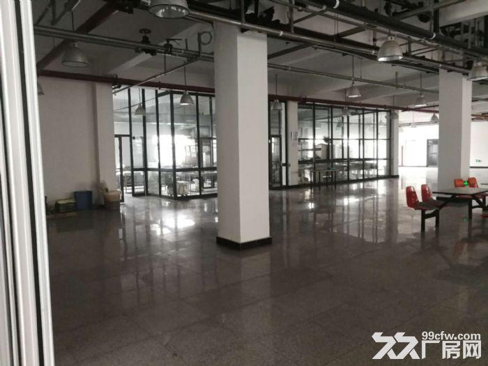 津南双港9000平米优质厂房出租-图(5)