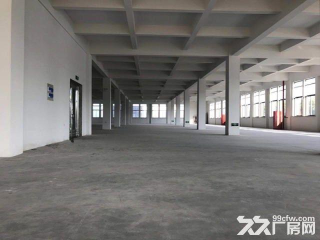 唯亭全新独栋10000平可分租大货梯+位置好-图(2)