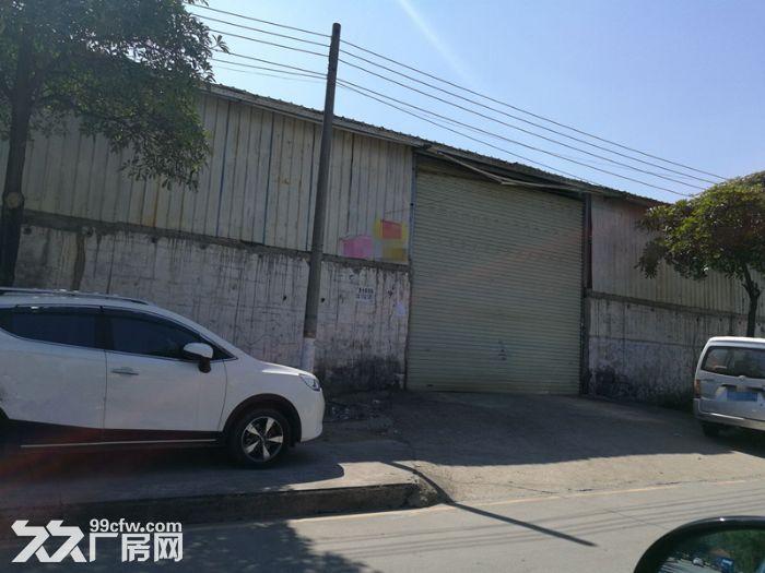 石基新出1500平方简易厂房,工业区,方正实用-图(2)