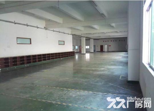 东城下桥楼上1750平带装修厂房招租-图(3)