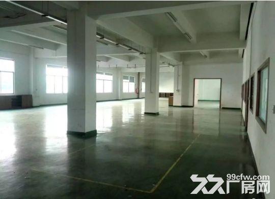 东城下桥楼上1750平带装修厂房招租-图(5)